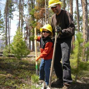 TreePlanting 2