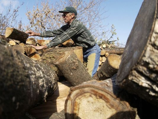 Firewood_Coloradoan
