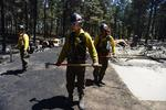 20140314__black_forest_fire_fighters