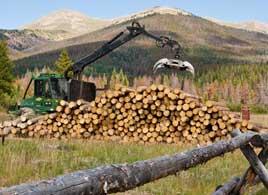 CSFS-cowood 2